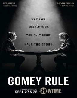 Voir serie The Comey Rule en streaming